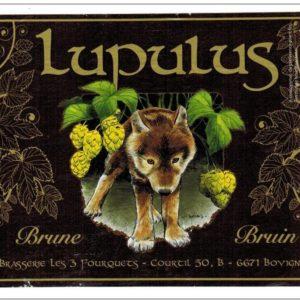 Пиво Lupulus Brune (Люпулус Брюн) нефильтрованное темное эль кег 20 л Бельгия